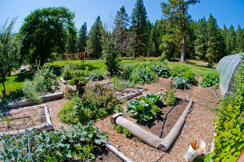 Skalitude's Garden